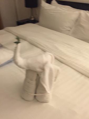 Casa Ticul Hotel by Koox: Creative maid service