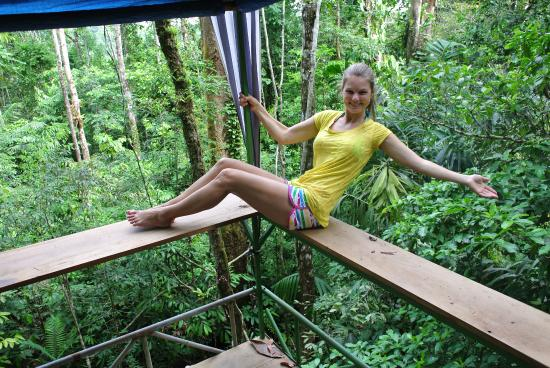 Drake Bay, كوستاريكا: Jungle View From the Tower Platform Cabin
