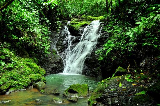 Drake Bay, كوستاريكا: Pristine Swimming Hole