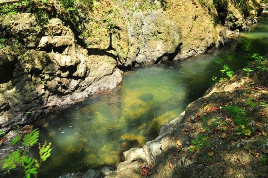Drake Bay, كوستاريكا: Clear River