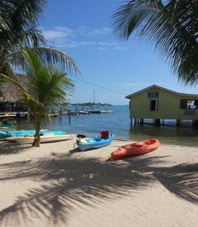 Paradise Vacation Hotel : We offer Kayaks and much more