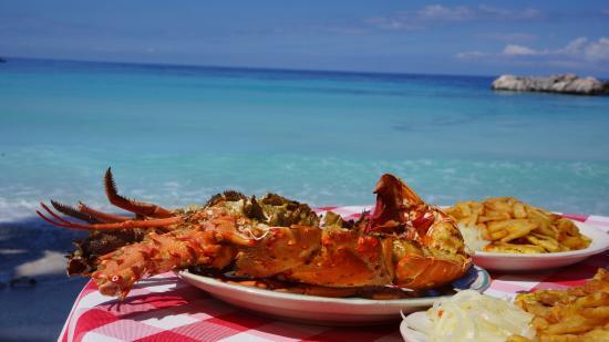 Kokoye Beach: langouste