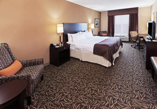 Holiday Inn Ardmore I-35 : King Feature Guest Room