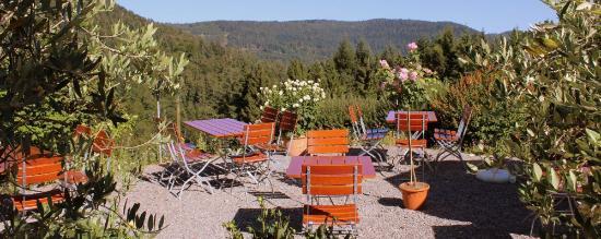 Gasthof Pension Moosbach: Moosbach Terrasse