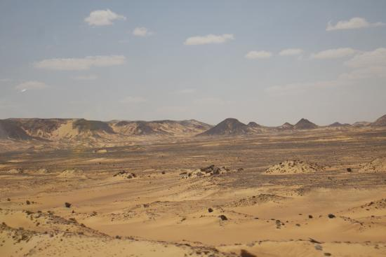 Bahariya (Bahereya) Oasis: photo8.jpg