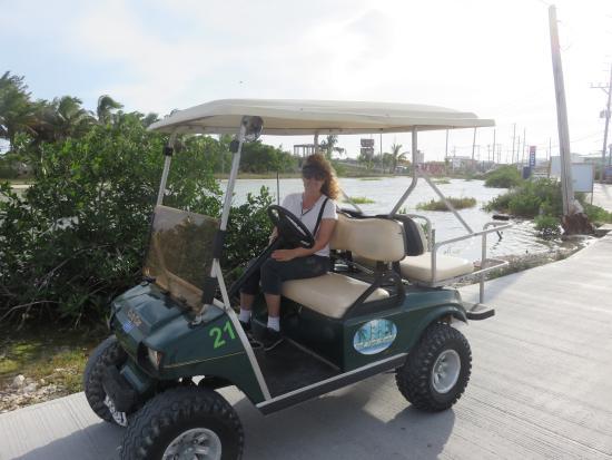 J&H Golf Cart Rental