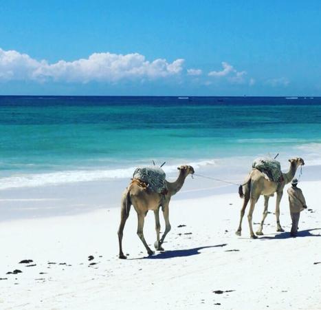 Waterlovers Beach Resort: photo7.jpg