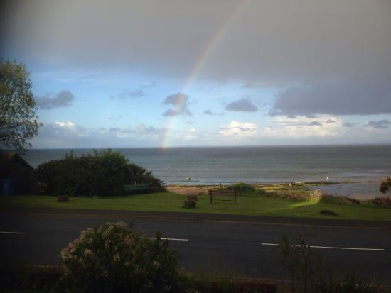 Whiting Bay, UK: Spring views from the Arran Brewery Guesthouse 2016