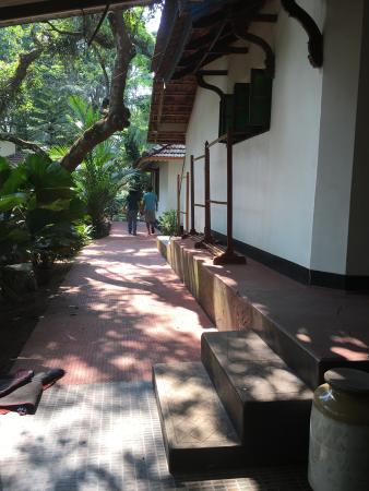 Gowri Residence: afternoons