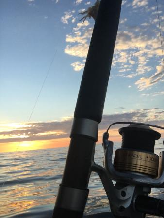 Topcat Fishing Charters