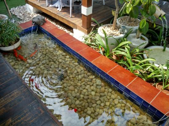 Fish Picture Of Zafraan Exotica Hyderabad Tripadvisor