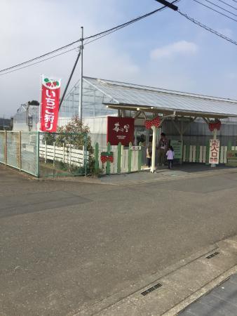 Ichigo-no-Sato