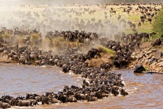 Across Africa Nature