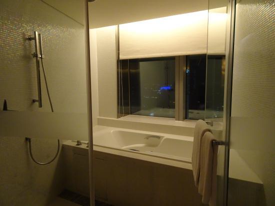 The Landis Taichung: 有景觀的浴室