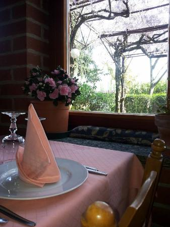 Ristorante antica trattoria gerli in milano con cucina - Trattoria con giardino milano ...