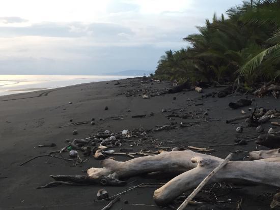 Playa Zancudo, Costa Rica : photo8.jpg