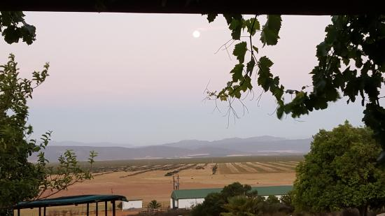 Piketberg, Güney Afrika: The view from cottage 4