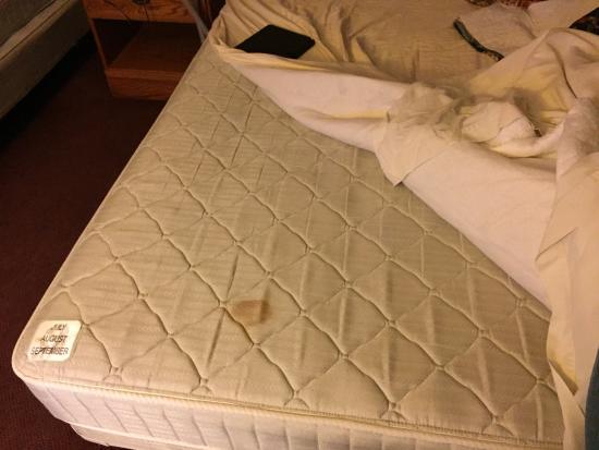 Heritage Inn Amana Colonies Hotel & Suites : photo1.jpg