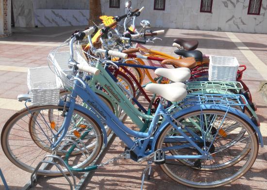 Bici Bike Vintage: city bike rent and sale playa del ingles maspalomas gran canaria