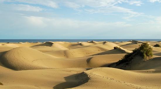 Bici Bike Vintage: dunas saharianas playa del ingles maspalomas gran canaria