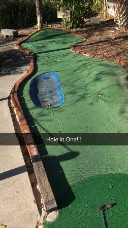 Safari Golf and Games: This is the Animal Side of the Mini Golf Course