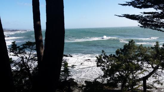 Whale Watch Inn by the Sea: Gorgeous view from our deck!