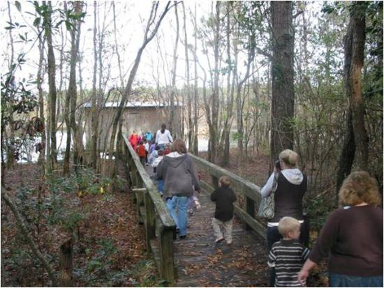 Core Sound Waterfowl Museum & Heritage Center: Kids love the Willow Pond