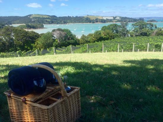 Остров Уаихеке, Новая Зеландия: photo1.jpg