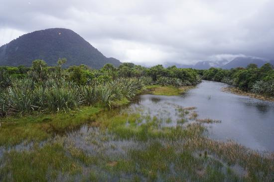 Haast Tourism And Holidays Best Of Haast New Zealand