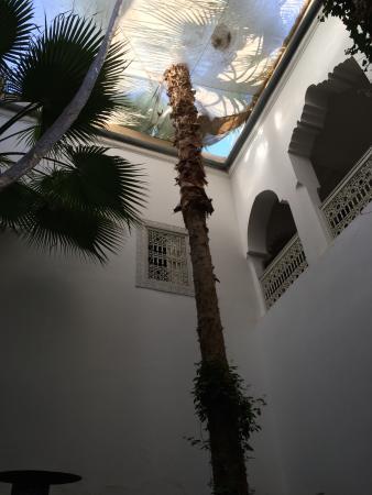 Riad Vert Marrakech Bild