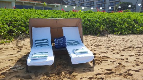 Royal Lahaina Resort Very Nice Cabana Set Up On The Beach