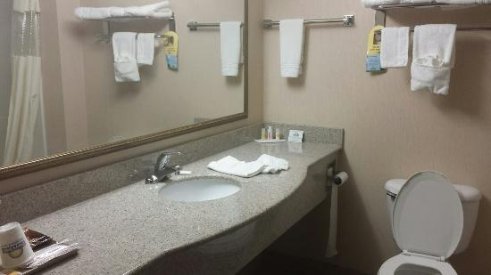Days Inn Budd Lake : Great professional room!