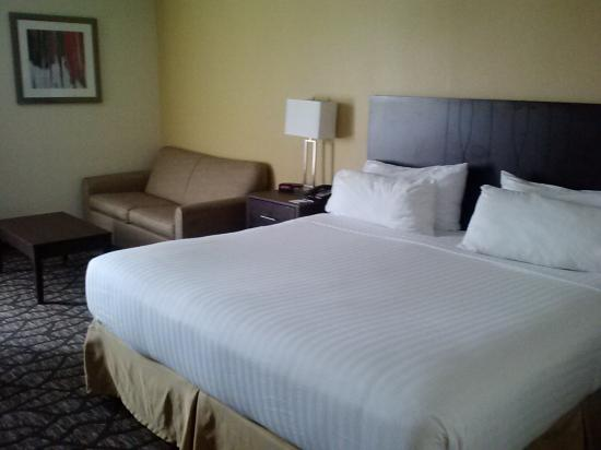 Holiday Inn Express Tallahassee East: bed and sofa bed