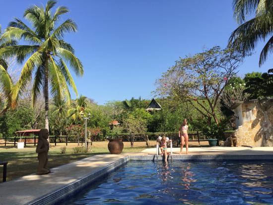 Hotel Paraiso del Cocodrilo: Hotel grounds