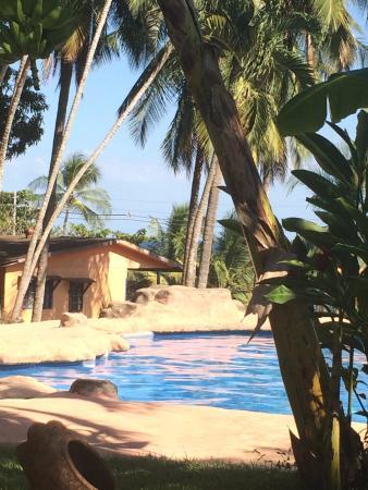 Hotel Los Mangos: The pool