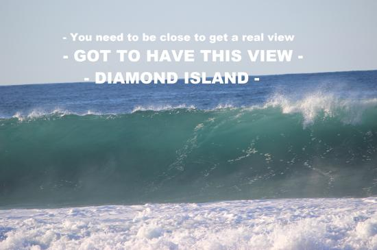 แทสมาเนีย, ออสเตรเลีย: Beach View, you have to be up close to experience.