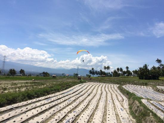 Paralayang di Matantimali: photo2.jpg