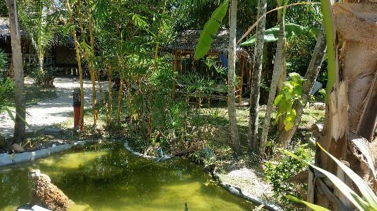 Room photo 8800619 from Lanta Sunny House Hotel in Ko Lanta