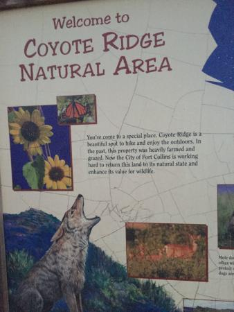 Coyote Ridge Natural Area