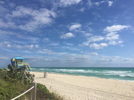 Hotel Mare Azur Miami Beach