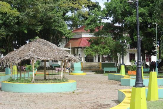 Coconut Hostel: Parque Simón Bolívar, delante del Hostel