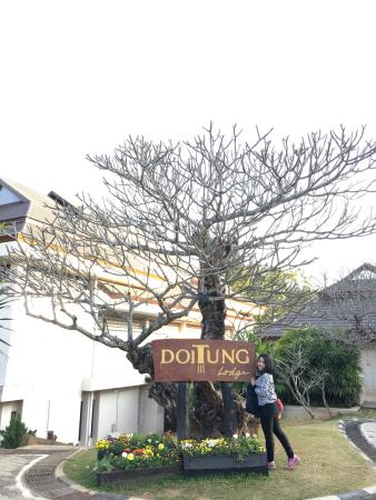 DoiTung Lodge: photo0.jpg