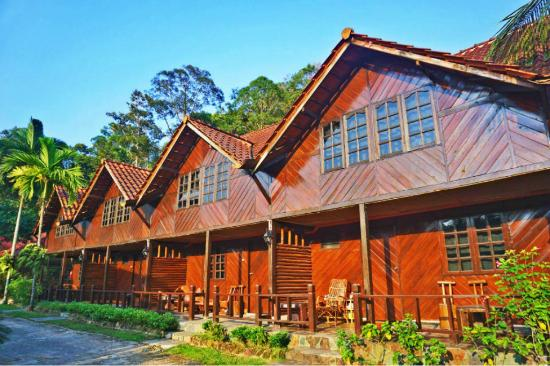 Kota Rainforest Resort : Chalets