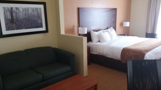 our room with pull out couch picture of comfort suites anderson rh tripadvisor com