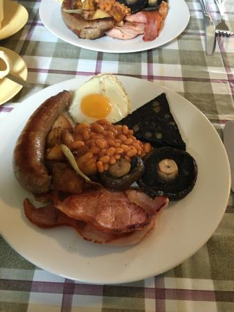 Graze on the Green: Cracking full English with proper leaf tea  Excellent quality fare