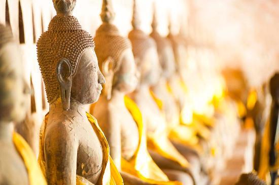 Laos Tourist