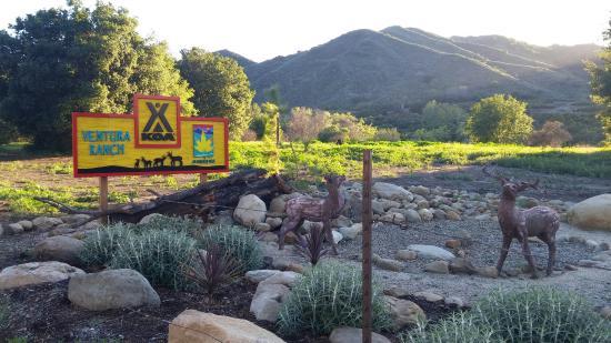 Ventura Ranch KOA: 0311161720_large.jpg