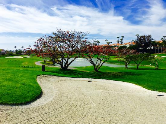 Dana Point, Californie : Monarch Beach Golf Links