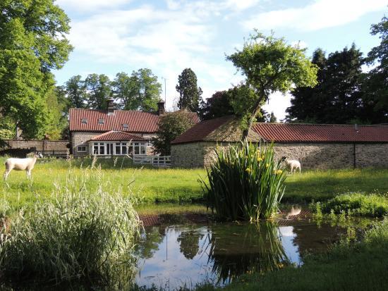 Cherry Garth cottages