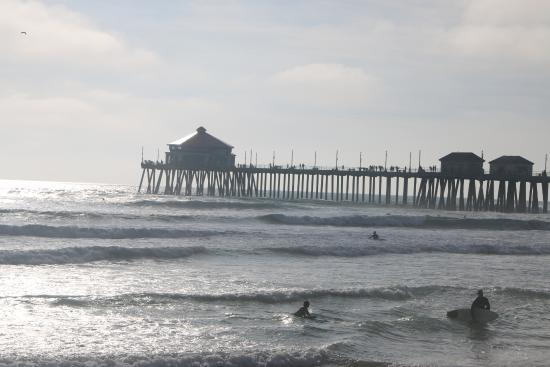 A nice night time walk picture of huntington beach pier for Huntington beach pier fishing